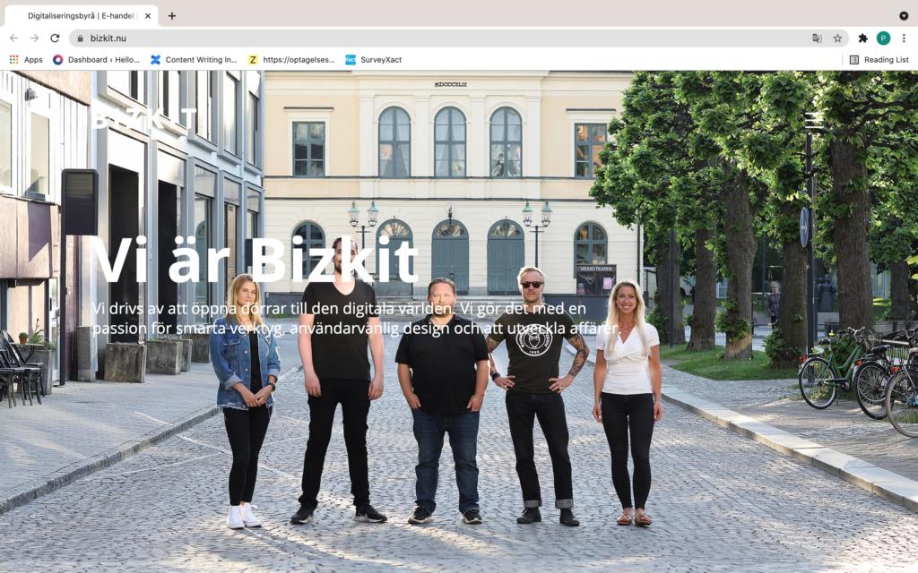 Bizkit homepage